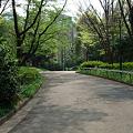 Photos: 090427_新宿都庁周辺_3