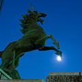 写真: 月を踏む麒麟