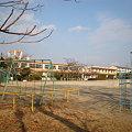 写真: 篠岡小学校