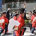かつみ鳴子会 - 第5回浦和よさこい(南浦和)