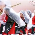 写真: かつみ鳴子会_浦和よさこい2008_47