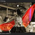 写真: 子鳩子兎 横浜百姫隊_東京よさこい2008_03