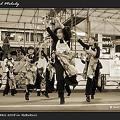 Photos: 東海花舞_東京よさこい2008_03