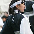 写真: 江戸の華_池袋チャリティーよさこい-02