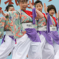 踊るBAKA!TOKYO_川崎大師厄除けよさこい_07