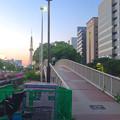 写真: 夕暮れ時、久屋大通公園の歩道橋を渡る人 - 1