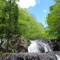 写真: 滝のそばが気持ちいい!