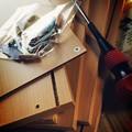 写真: GW春の工作!棚を組み立てよう