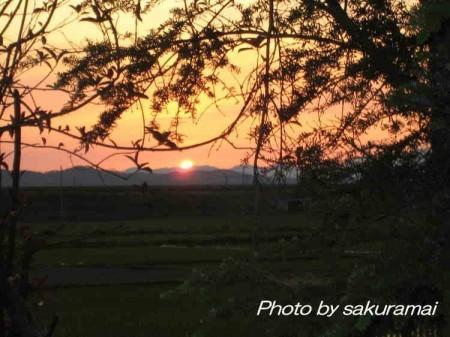 梅雨の夕陽