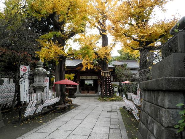 素盞雄神社-03a
