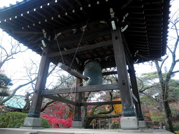 世田谷線:宮の坂駅界隈_豪徳寺-05鐘楼a紅葉