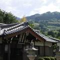 丹生酒殿神社05