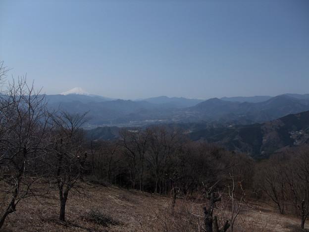 写真: DSCF6638