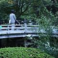 写真: 兼六園 花見橋と白い萩  お母さん、子供さんに気をつけて!(^^;))