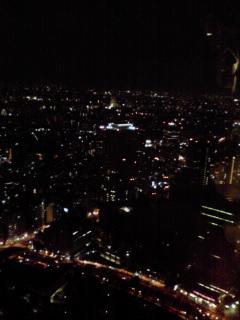 写真: 都庁夜景
