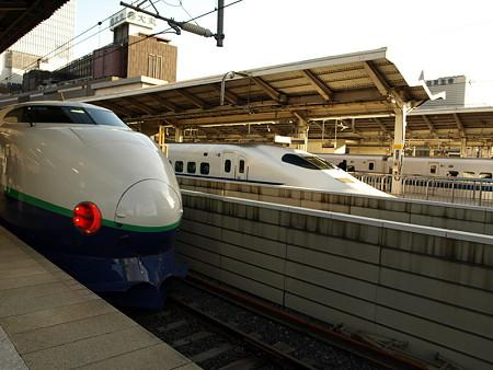 200系と700系(東京駅)