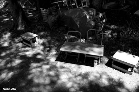 木漏れ日の場所