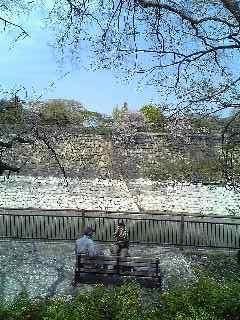 20090412 大阪城の天守閣