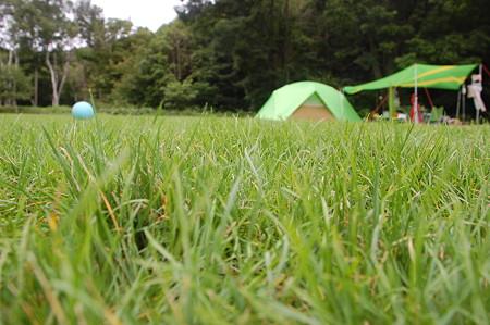 キミがいれば 简谱-芝が似合うのは、やっぱりサッカーボール?   3人固まって何してるの