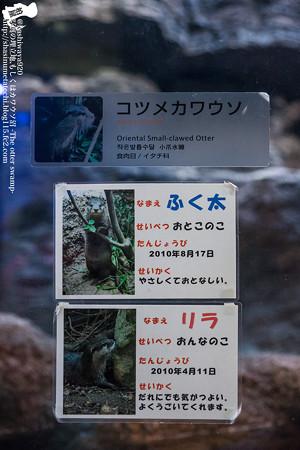 fukuoka140315003