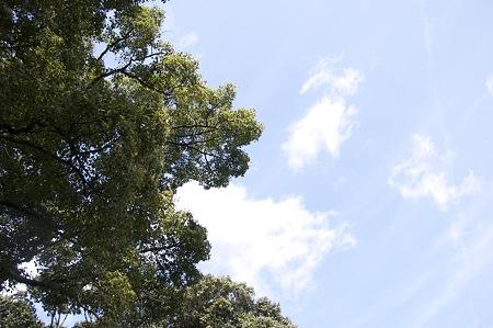 2009-03-07の空1