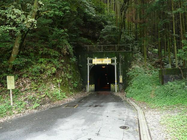 谷津隧道西口