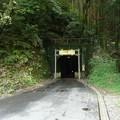 写真: 谷津隧道西口