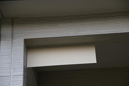 3月22日に付けた巣台の目隠し