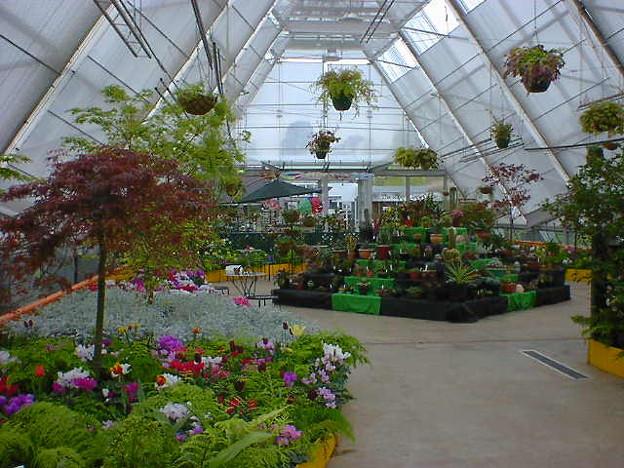 Botanical Gardens温室 即売もやってます