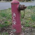 Photos: 消火栓