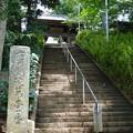 Photos: 海珠山多聞院徳満寺 参道