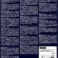 Photos: 海にきらめく珠玉のチャリティガラコンサート 12  日本声楽家協会 特別演奏会 2014
