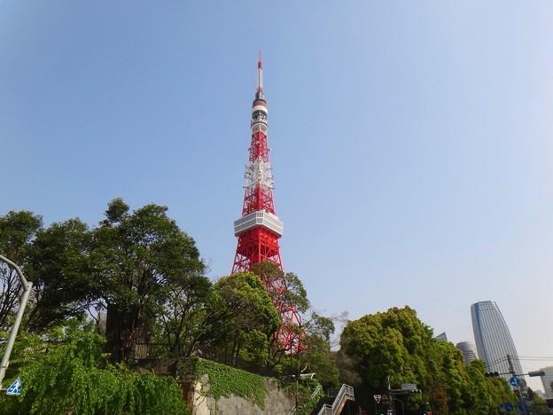 140417 東京タワー