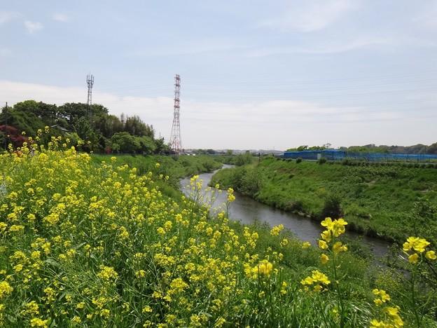 140503 鶴見川
