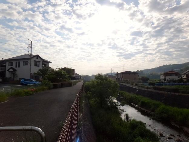 140516 鶴見川