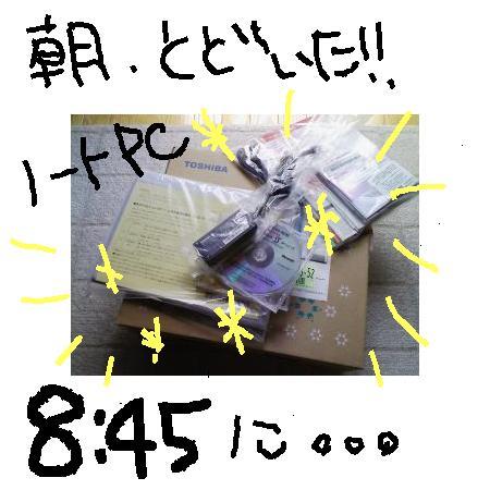 Photos: 朝、とどいた!!