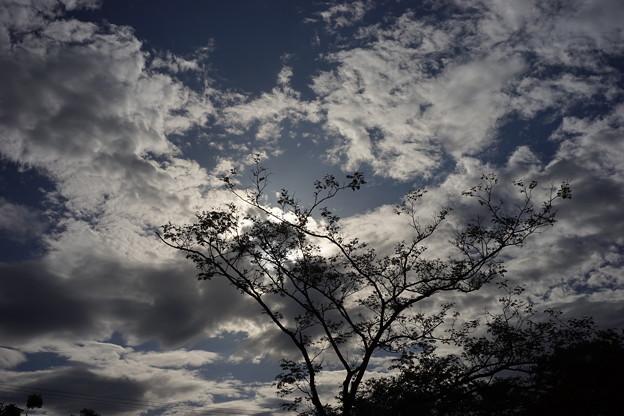 Photos: DSC01815