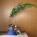 6月なのに雪柳の花???