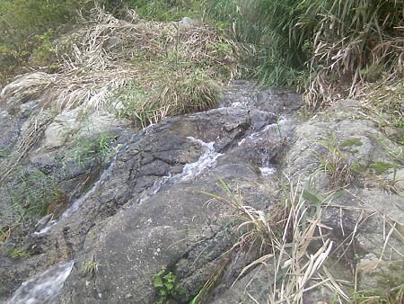 赤芝峡に流れこむ水