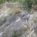 写真: 赤芝峡に流れこむ水