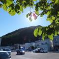 Photos: 西友駐車場から円山を望む