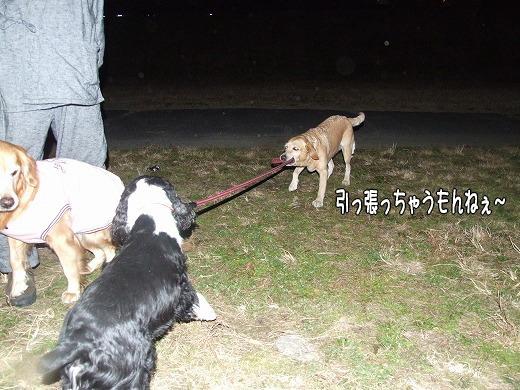 s-myu2008_1228(054)