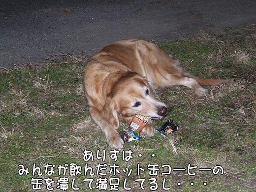 s-myu2008_1230(006)