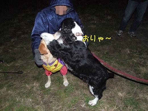 s-myu2008_1230(008)