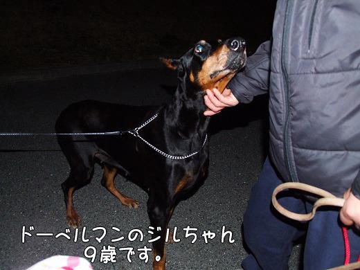 s-myu2009_0128(054)