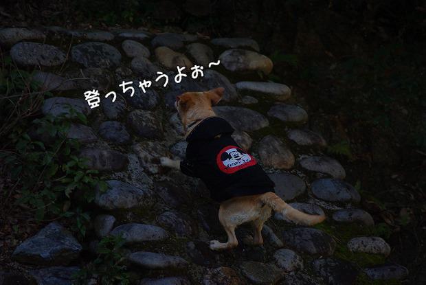s-myu2009_0221(252)