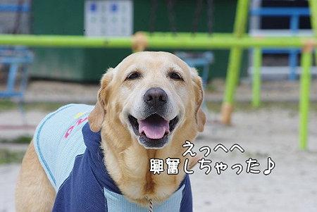 s-myu2009_0327(035)