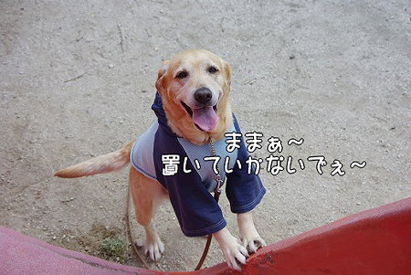 s-myu2009_0327(048)