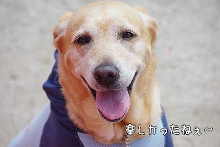 s-myu2009_0327(051)