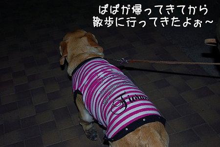 s-myu2009_0330(123)